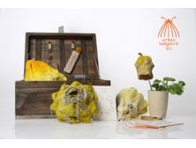 Catherine Verpoort [MA Textiles Futures] 2012 CSM